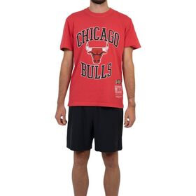 Mitchell & Ness Chicago Bulls Vintage Crest Logo Mens Basketball T-Shirt